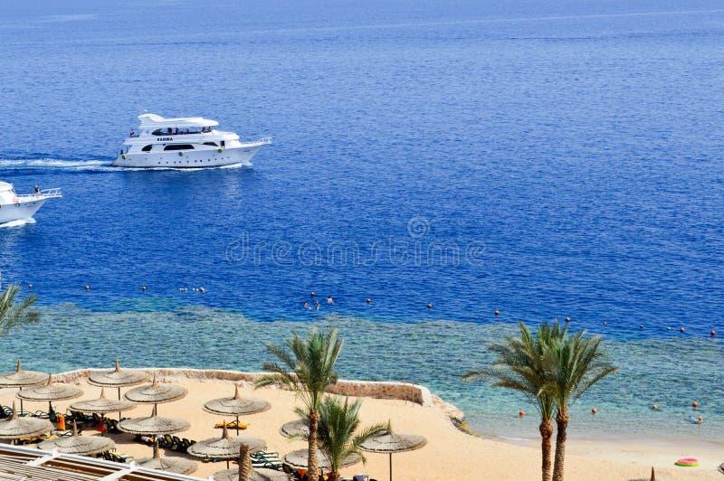 一个沙滩和两艘大白色船,小船,漂浮在海的巡航划线员的顶视图与sunbeds和阳伞的  免版税库存照片