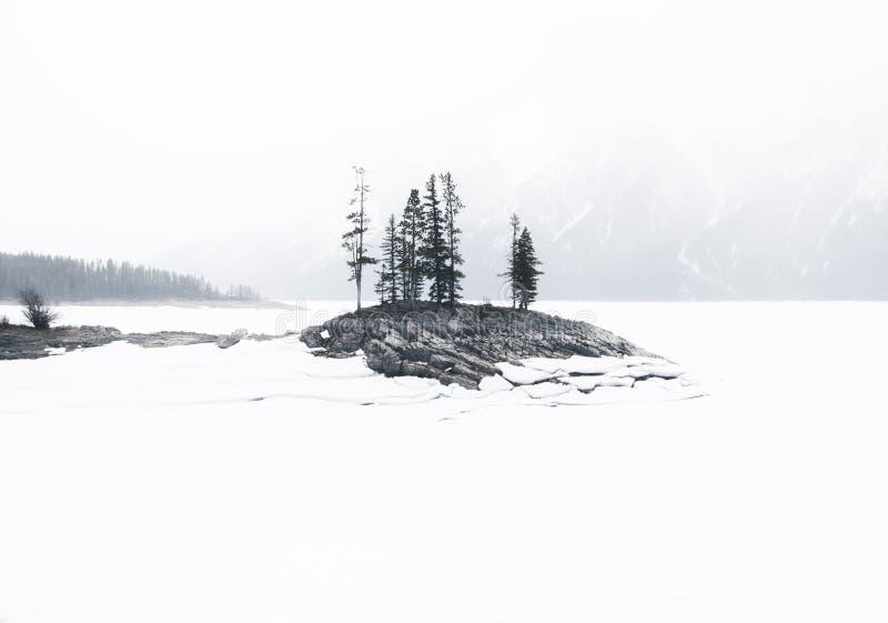 一个海岛在冻积雪的湖Minnewanka在亚伯大加拿大 库存照片