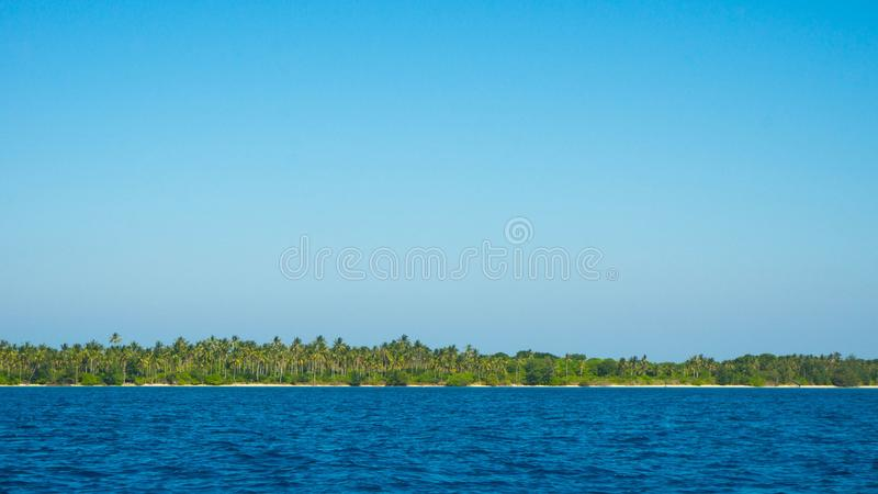 一个海岛用很多棕榈树椰子在海中间的低土地海岛距离的 免版税库存照片
