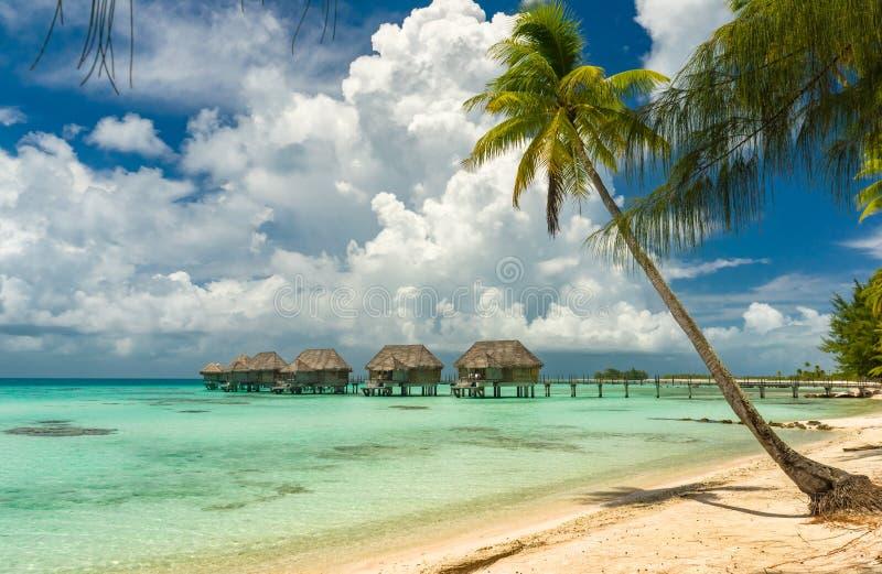 一个海滩的Overwater平房在提克豪环礁 免版税库存照片
