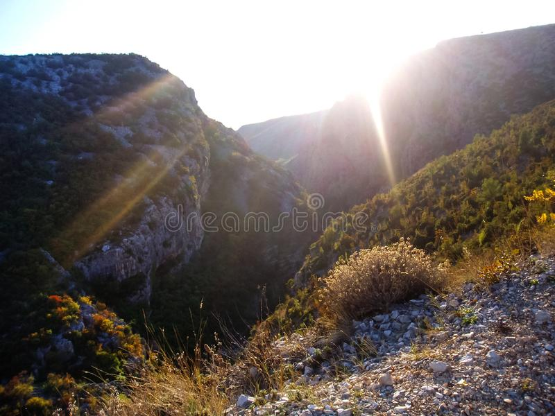 一个深峡谷 库存图片