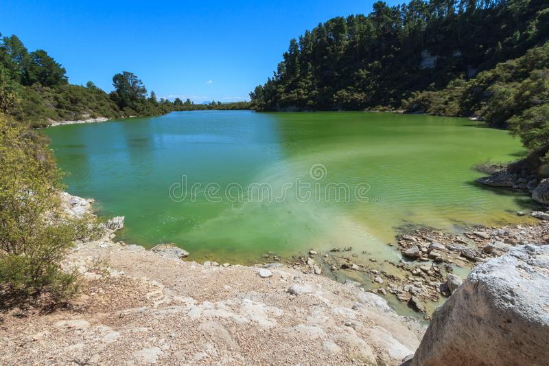 一个湖在一个地热区域,被上色黄绿被硫磺 库存照片