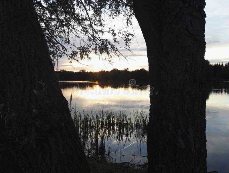 一个湖在法国 免版税库存图片