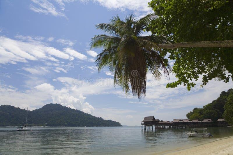 一个热带海滩在马来西亚 库存图片