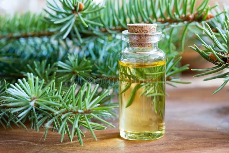 一个瓶与新鲜的云杉的枝杈的云杉的精油 免版税图库摄影