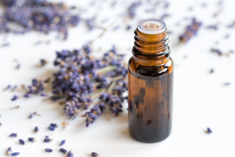 一个瓶在白色背景的淡紫色精油 库存照片