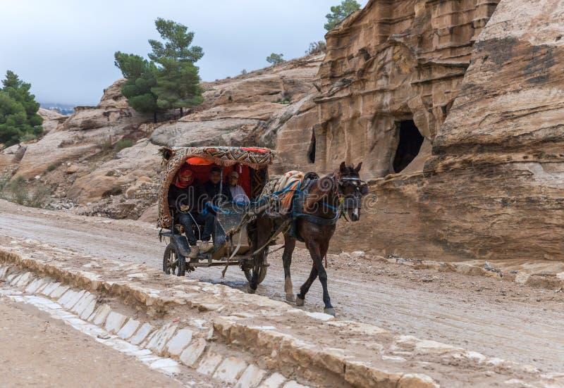 一个用马拉的支架的流浪的运载的游人在对Petra的途中在旱谷芭蕉科市附近在约旦 免版税库存照片