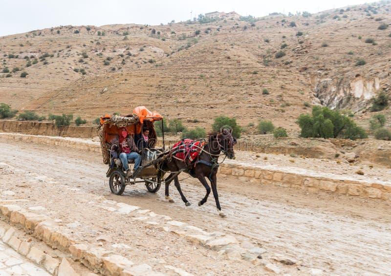 一个用马拉的支架的流浪的运载的游人在对Petra的途中在旱谷芭蕉科市附近在约旦 库存照片