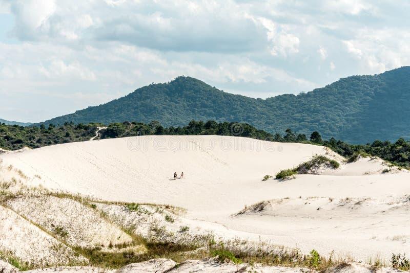 一个男人和一名妇女沙丘区域的在华金纳海滩,弗洛里亚诺波利斯,巴西 免版税库存照片
