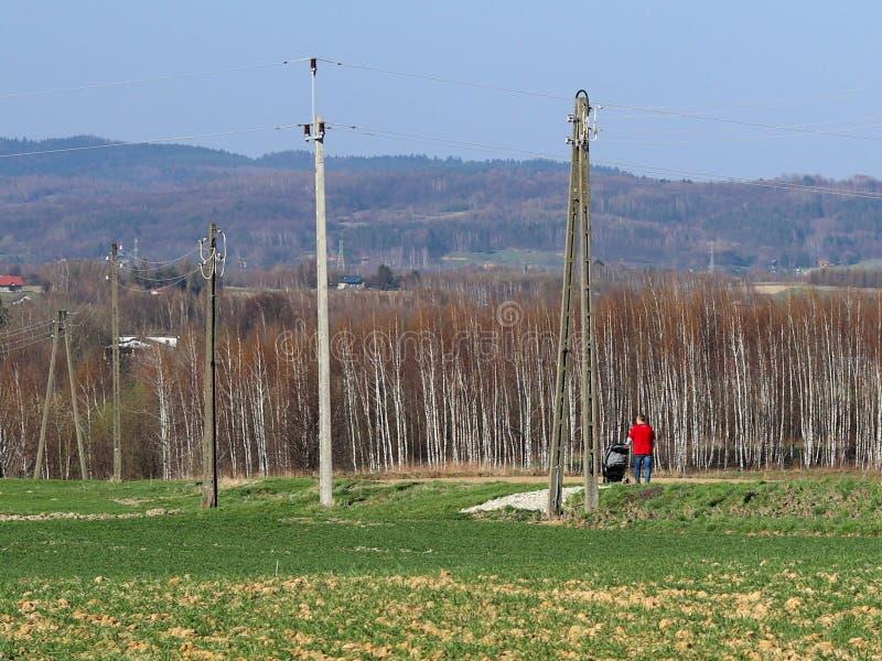 一个男性父亲走本质上与一个孩子的儿童` s婴儿推车的在电杆附近 与年轻麦子和桦树森林的领域 库存照片