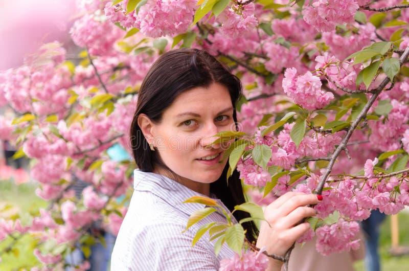 一个白种女孩喜欢樱花的香美 库存图片