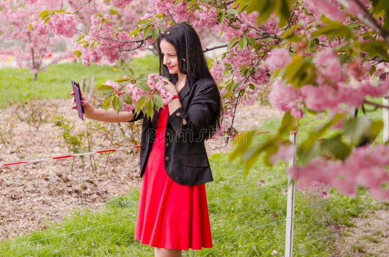 一个白种女孩喜欢樱花的香美 免版税库存照片