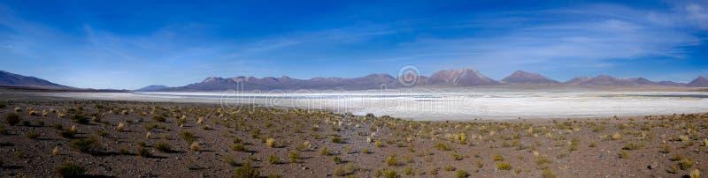 一个盐湖的全景在智利 库存图片