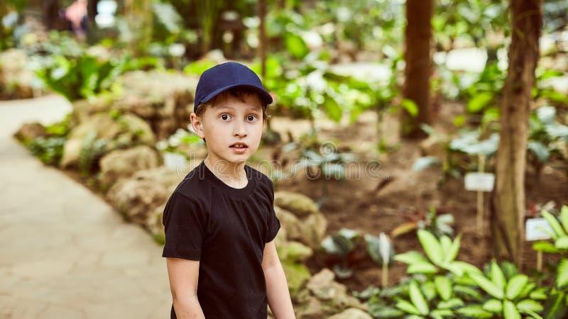 一个盖帽的男孩在夏天户外在公园 免版税库存照片