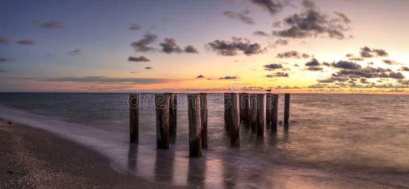 一个码头的被毁坏的废墟在口岸皇家海滩的在日落 图库摄影