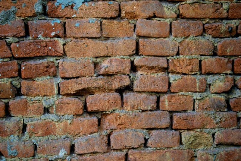 一个砖墙在一个老房子里 免版税库存照片