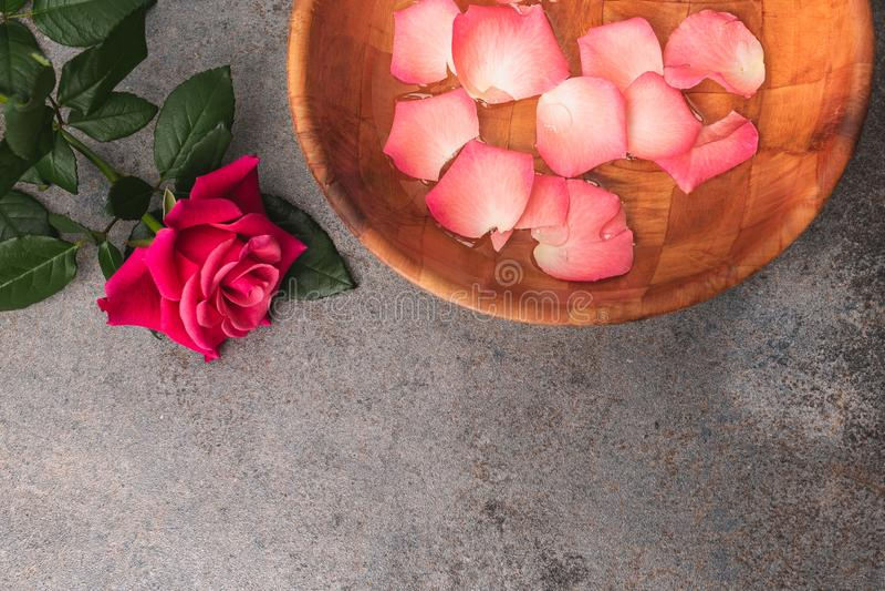 一个碗的顶视图修指甲水 红色玫瑰花瓣在中部 皇族释放例证
