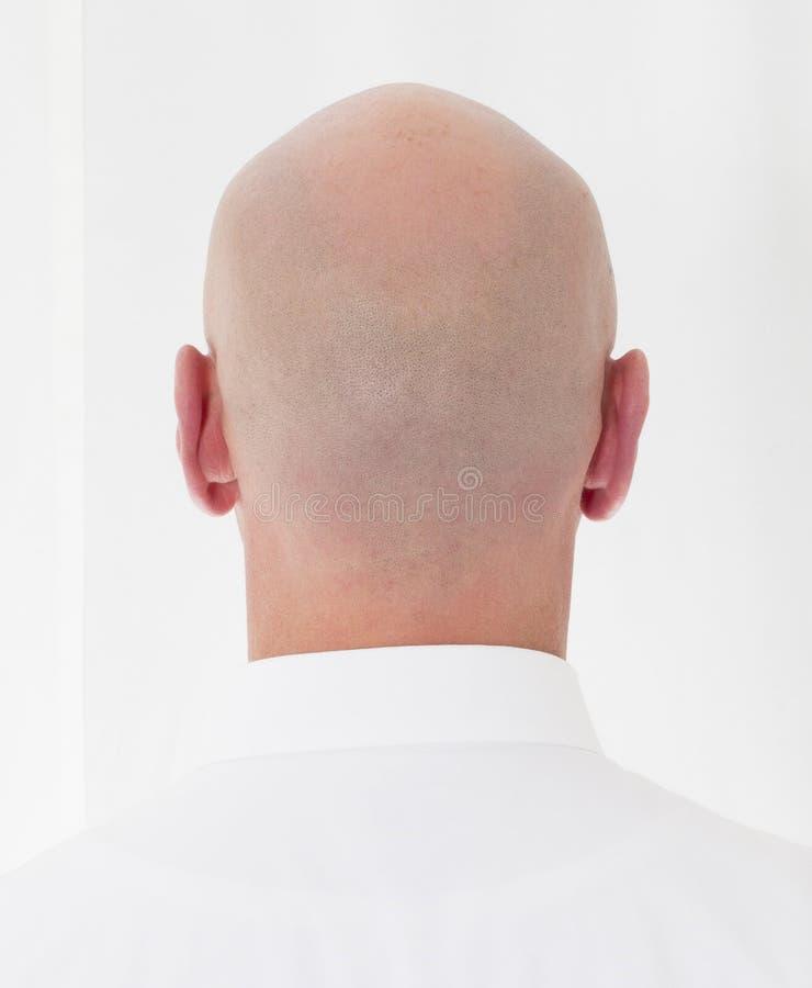 一个秃头 库存图片