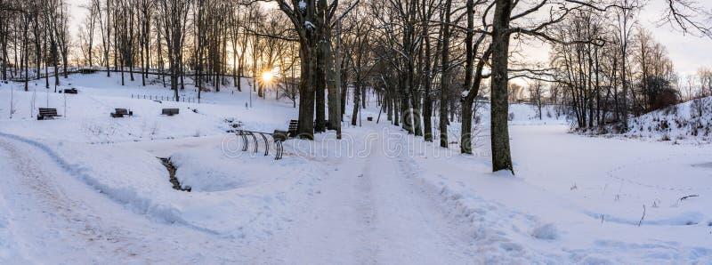 一个空的走道的全景照片在胡同的公园在晴朗的冬天晚上 免版税库存照片