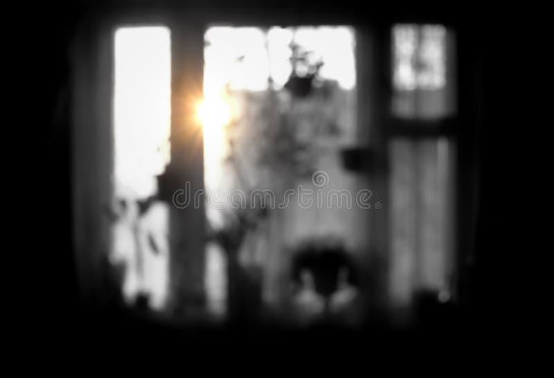 一个窗口的被弄脏的黑白图象用不同的室内植物的在日落或日出 起点的概念 库存图片