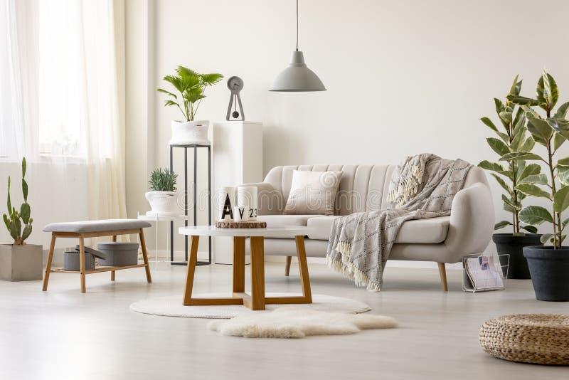 一个米黄沙发的真正的照片有坐垫和一揽子身分的 库存照片