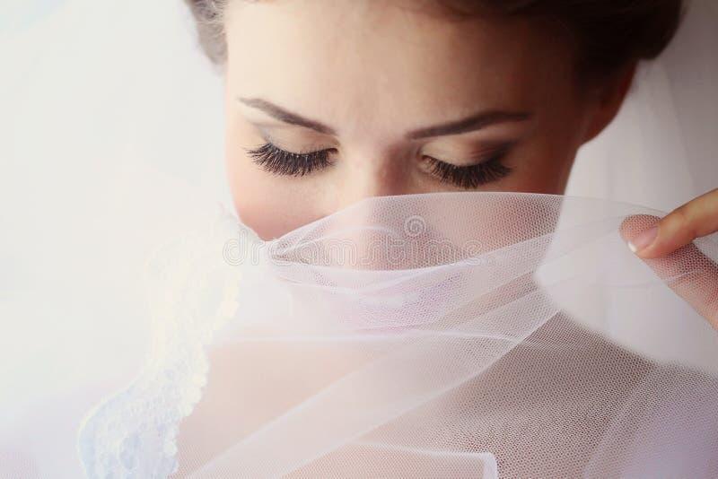 一个精美新娘的画象 图库摄影