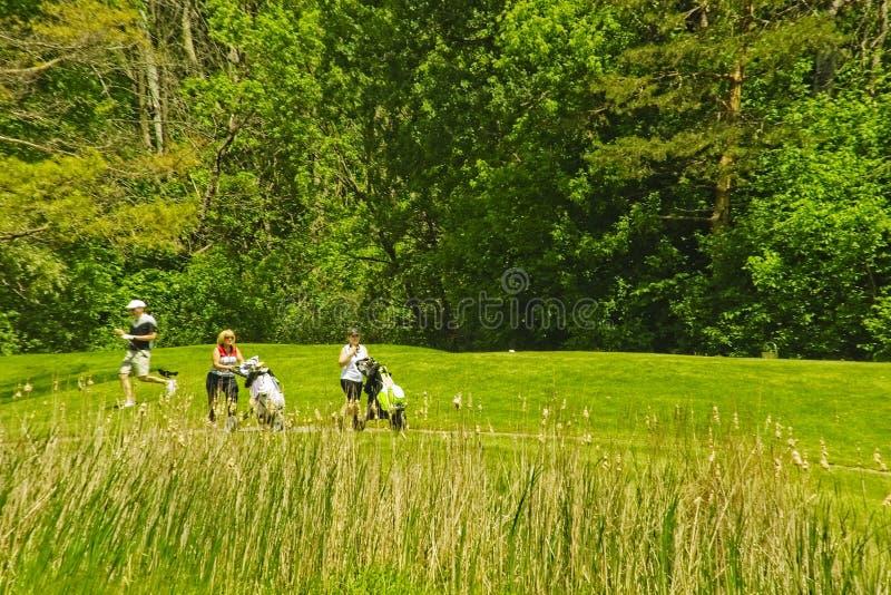 一个绿色高尔夫球场在一好日子 库存照片