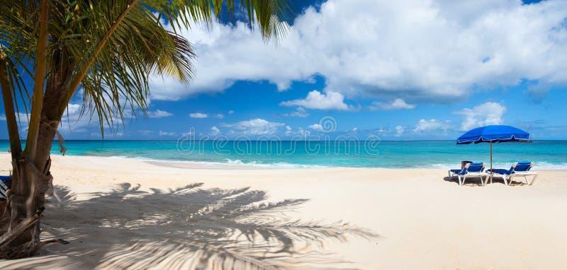 一个美丽的加勒比海滩的全景 免版税库存图片