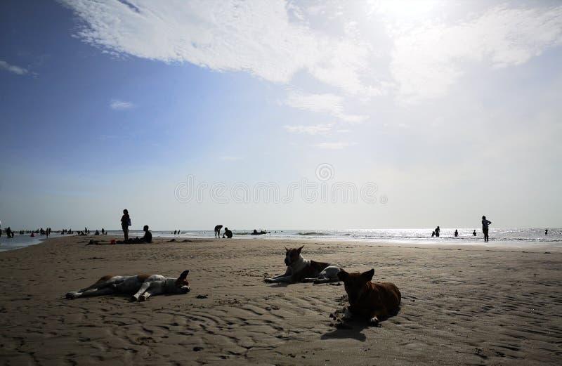 一个美丽的天空、海和剪影在泰国 与家庭的美妙的长的周末 图库摄影