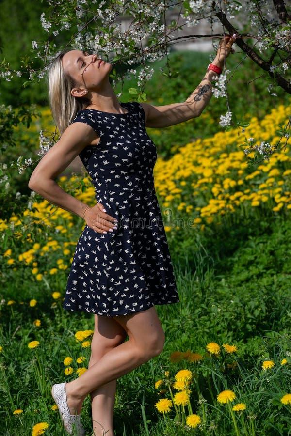 一个美丽的女孩的画象一件蓝色礼服的在有blosoming的苹果树的庭院里有乐趣和享用 库存图片