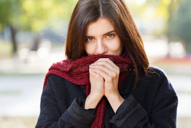 一个美丽的女孩的画象在一条红色围巾的秋天公园,看照相机 库存图片
