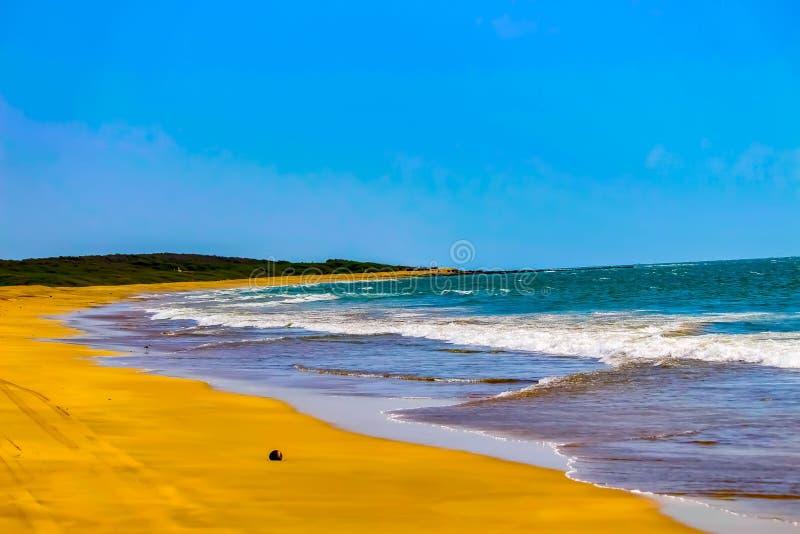 一个美丽的海滩 库存图片