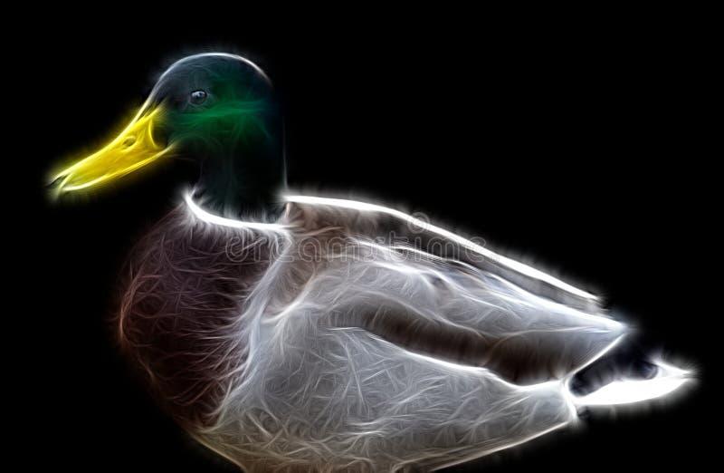 一个美丽的男性鸭子雄鸭特写镜头的分数维图象 向量例证