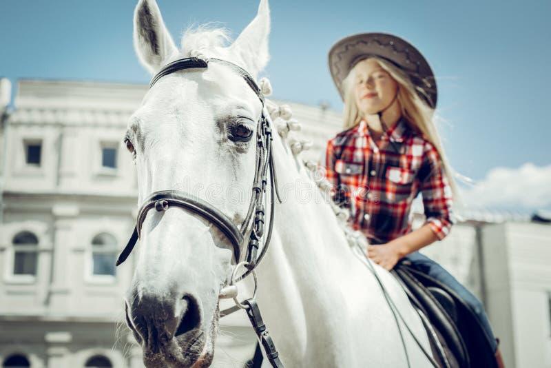 一个美丽的白马的选择聚焦 免版税库存照片