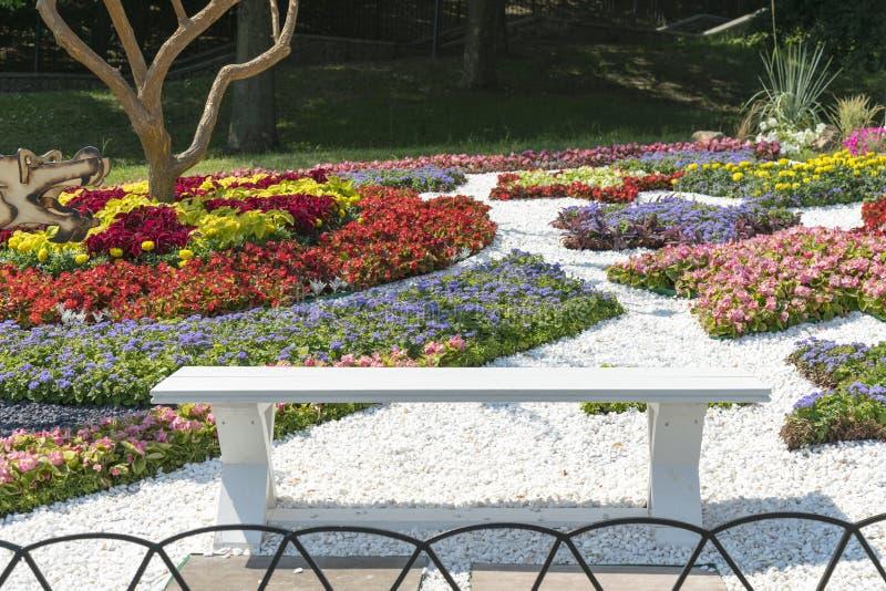 一个美丽的风景庭院的风景视图有新近地被割的草坪和花圃的绽放的 在美丽的花附近的长凳 库存照片