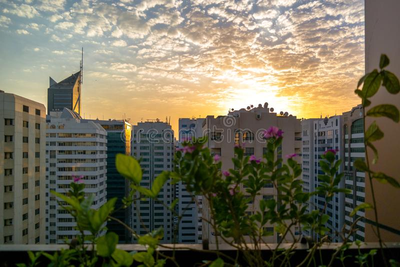 一个美好的多云早晨在阿布扎比市 从阳台的松弛看法有美丽的花的 库存照片