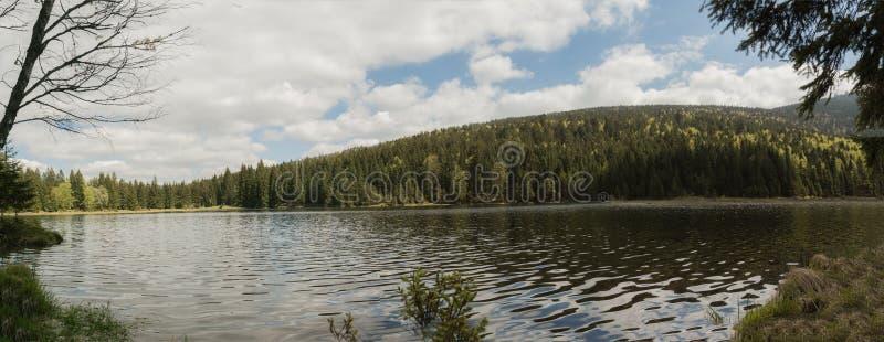 一个美好的风景场面的全景在小Arbersee的在巴伐利亚 图库摄影