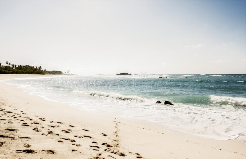 一个美好&田园诗海滩场面在蓬塔de乡田,纳亚里特州,Mex 库存图片