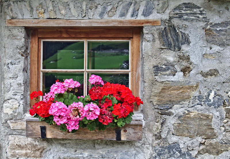 一个老农厂房子的墙壁由与窗口和红色花的散石做成 免版税图库摄影