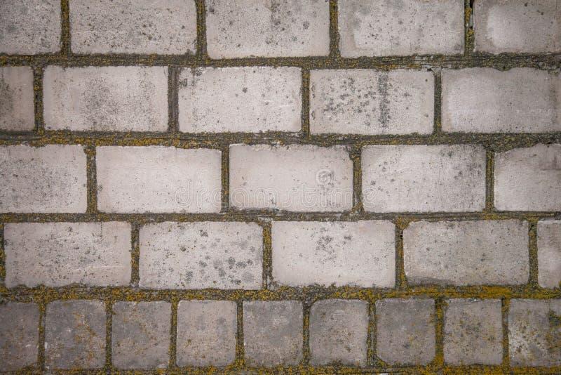 一个老发霉的砖墙 砖建筑准备白色 在熔炉的火 背景 免版税库存照片