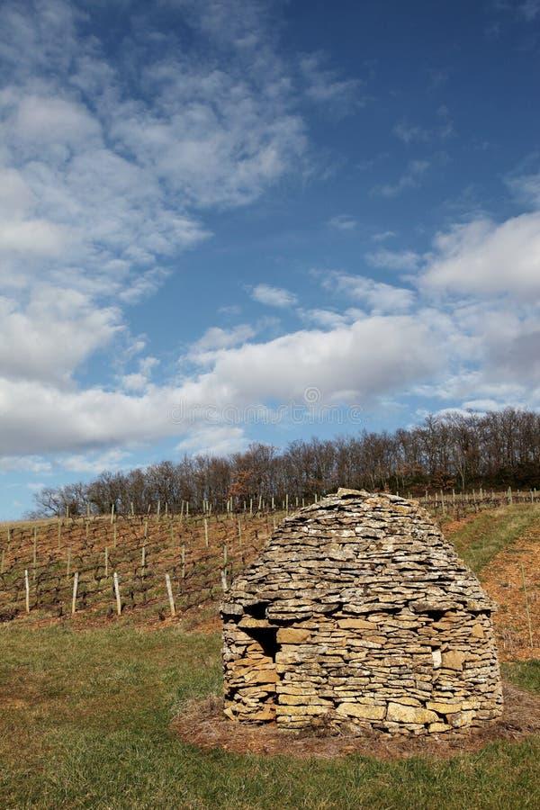 一个老和典型的石小屋在博若莱红葡萄酒葡萄园里  免版税库存图片
