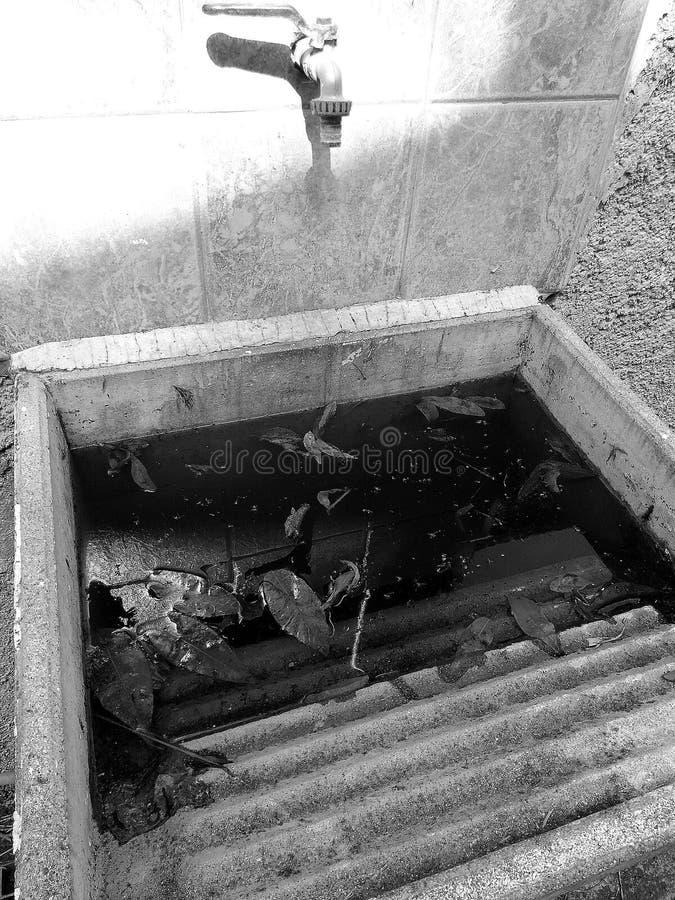 一个老喷泉充满肮脏的水 库存图片