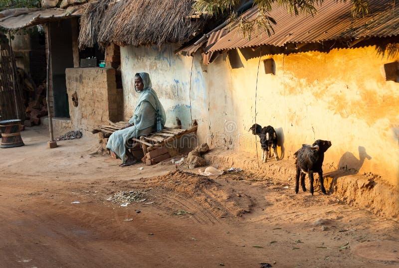 一个老妇人和她的山羊在农村印度 免版税图库摄影