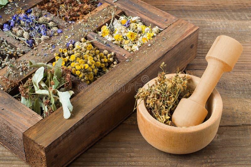 一个老木箱的干药用植物 库存照片