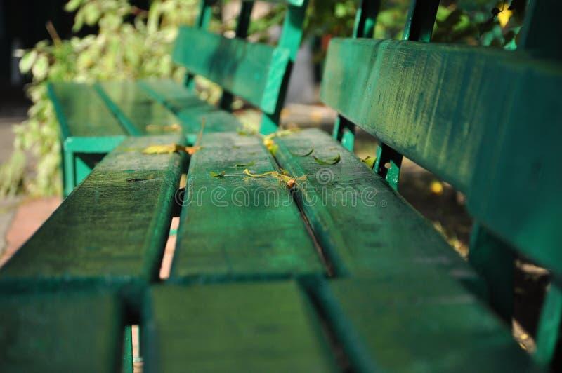 一个老绿色长木凳在秋天公园站立 免版税库存图片