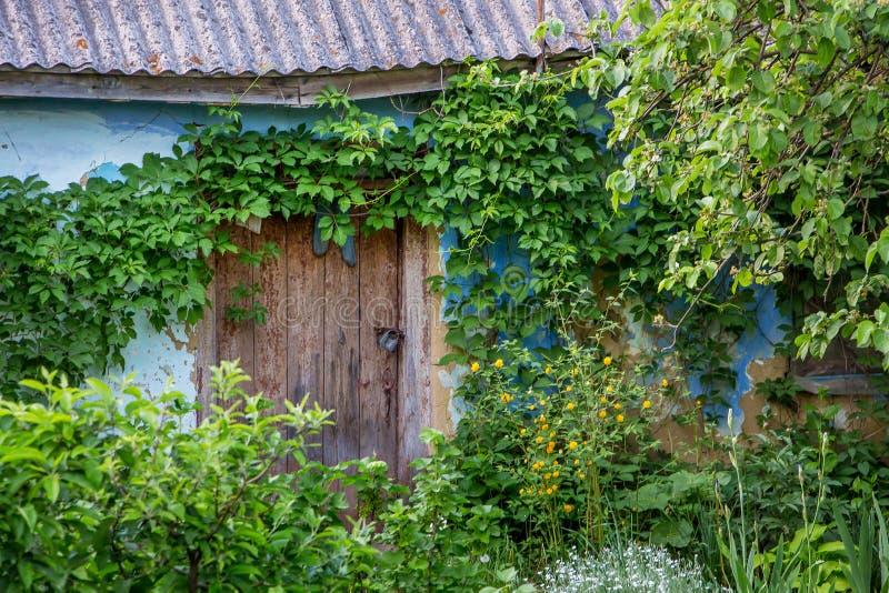 一个老被毁坏的房子 在老被放弃的home_附近的丛林 免版税库存照片
