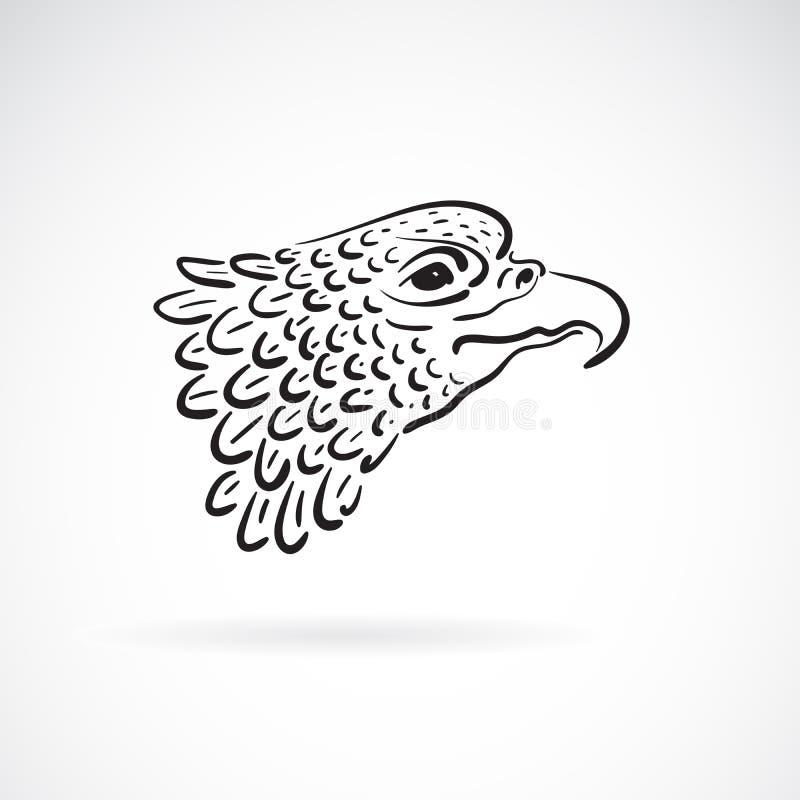 一个老鹰头的传染媒介在白色背景的 双翼飞机 通配的动物 库存例证