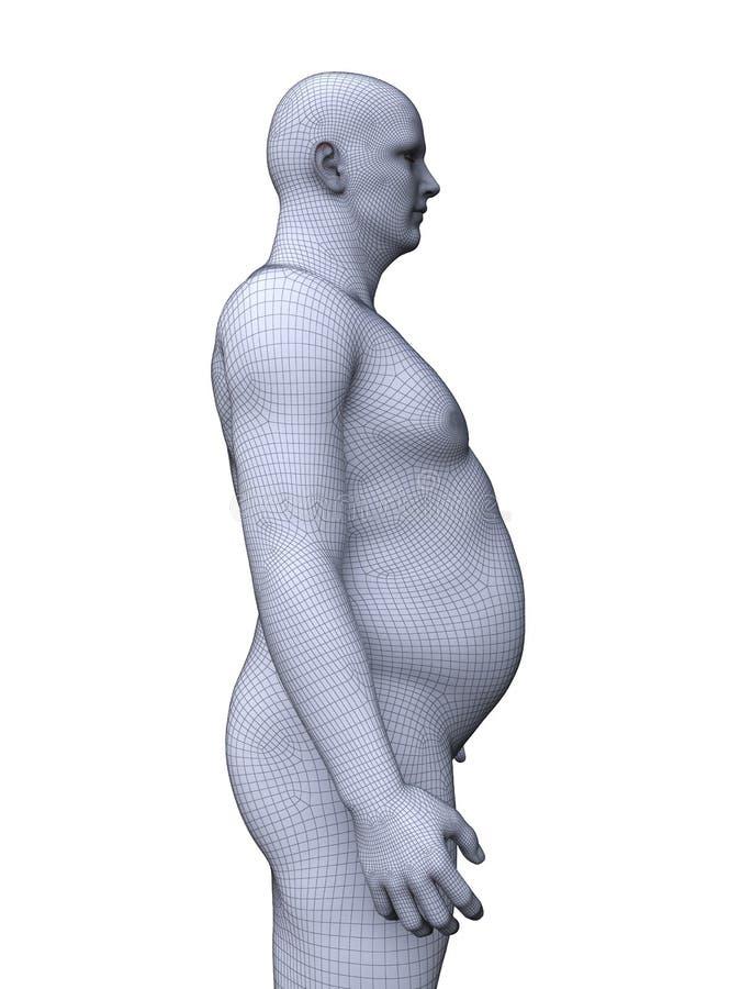 一个肥胖男性 库存例证