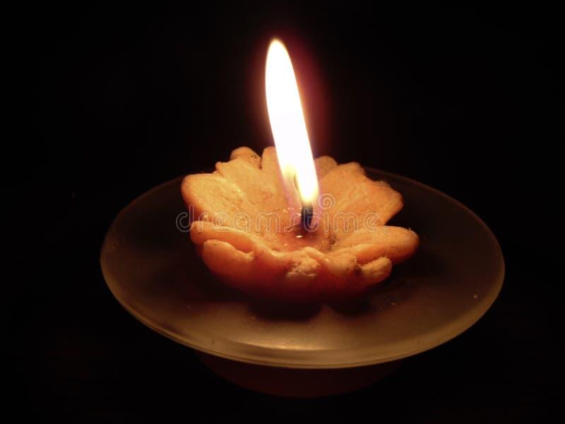 一个花形状的蜡烛 库存图片