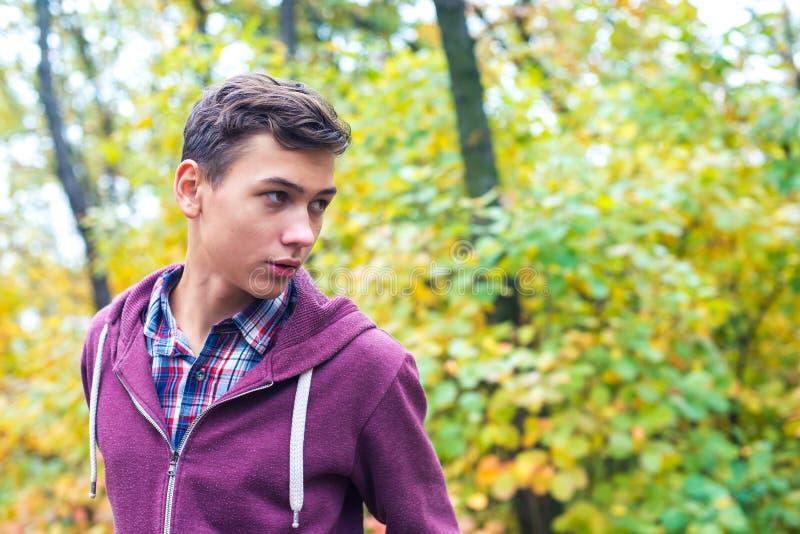 一个英俊的十几岁的男孩的画象在秋天森林里 免版税库存图片
